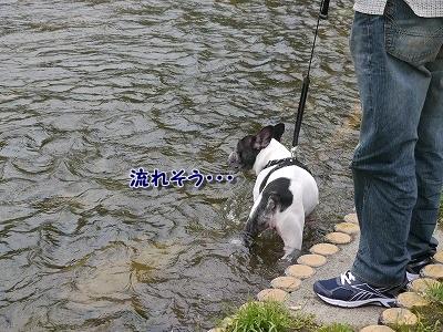 大雨 (3)