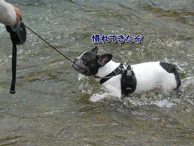 大雨 (4)