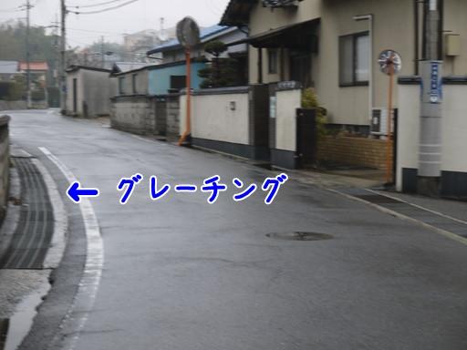 P1110758.jpg