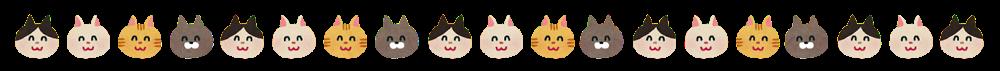 animal_cat.png