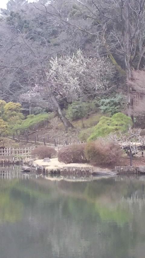江戸川新 002