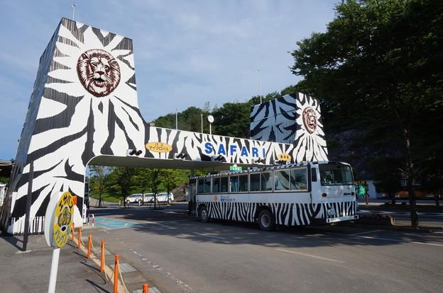 入口と見学用バス
