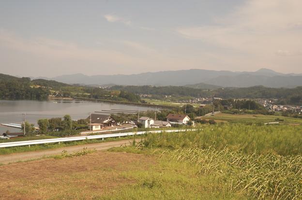 ヒマワリ畑から見た景色