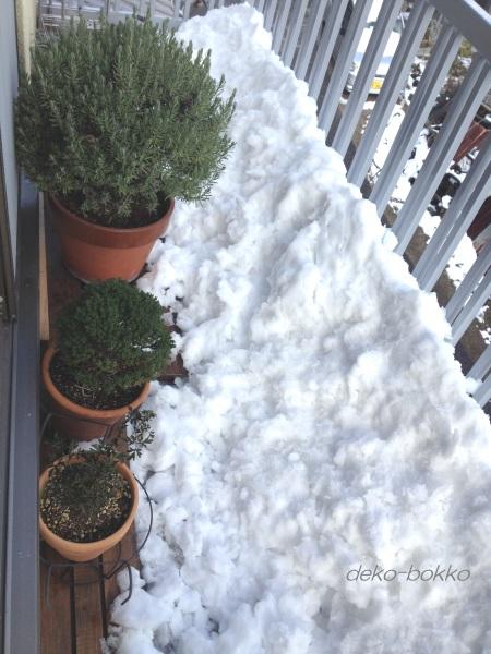 屋根からドカ雪 20141218
