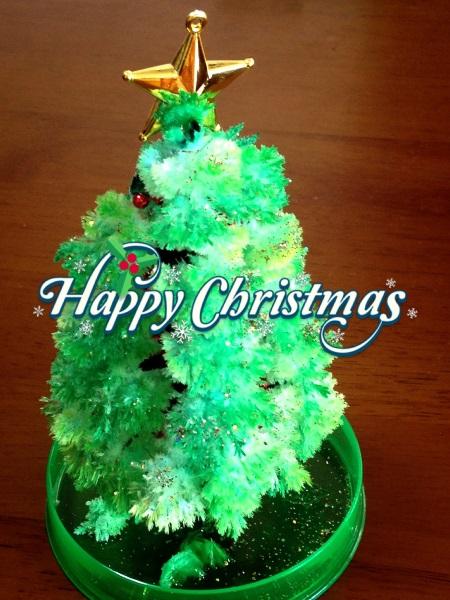 メリークリスマス 201412