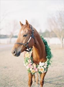 結婚式_画像_ペット_馬2