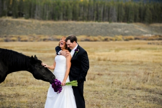 Devils-Thumb-Ranch-wedding-horse.jpg