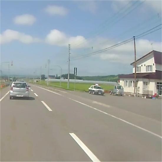 アオハタ2015_0051