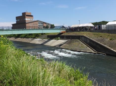 境川のゴム堰・俣野堰