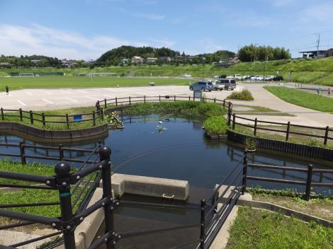 下飯田遊水地・二次池排水口