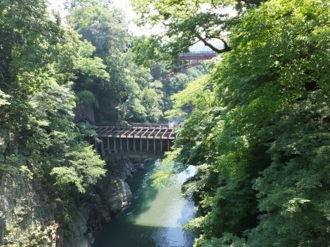 猿橋より下流を望む