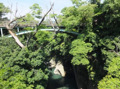 猿橋より上流を望む