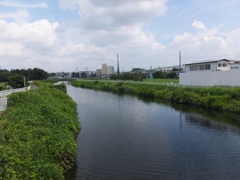 高鎌橋より境川上流を望む