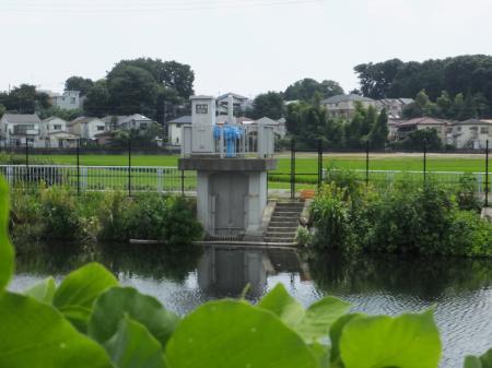境川高飯堰左岸取水門