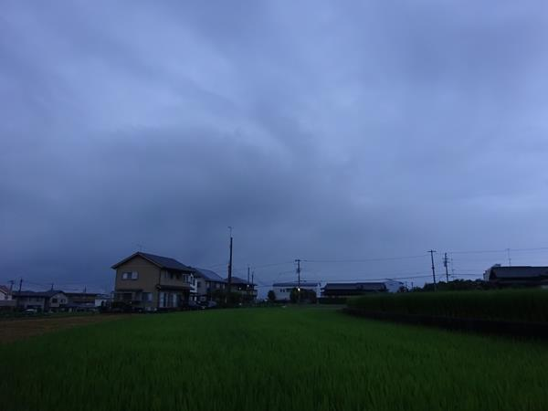 DSC00429.jpg