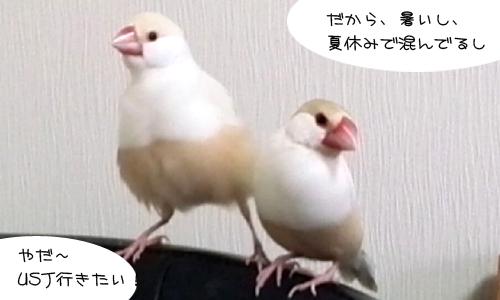 シェルの幸せ_3