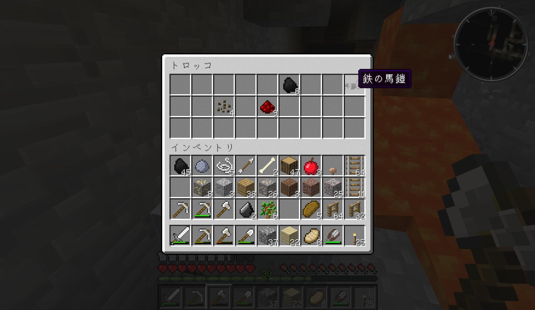 minecraft_11.jpg