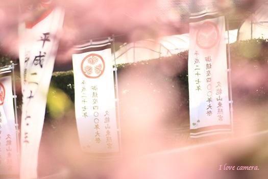 IMG_2015_02_25_9999_48久能山
