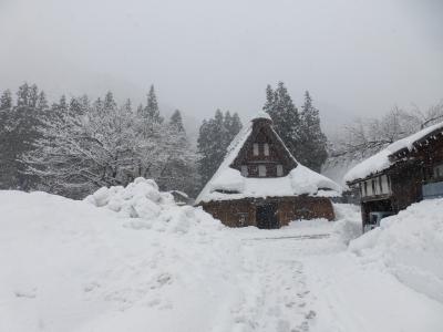 五箇山雪景色 2014 12・29