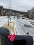 Snow_Feb2015_5.jpg