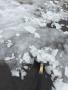 Snow_Feb2015_6.jpg