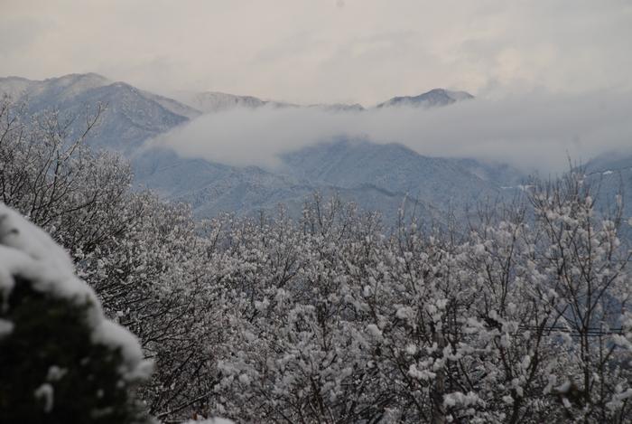 大菩薩嶺の雪6