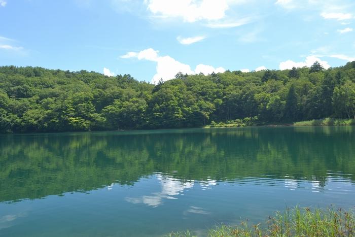 四尾連湖湖水に20