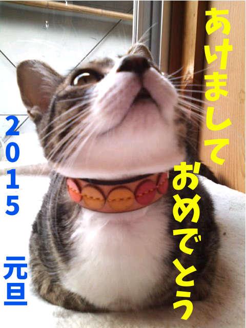 2015010102.jpg