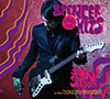 Spencer Sings The Hits / Jon Spencer