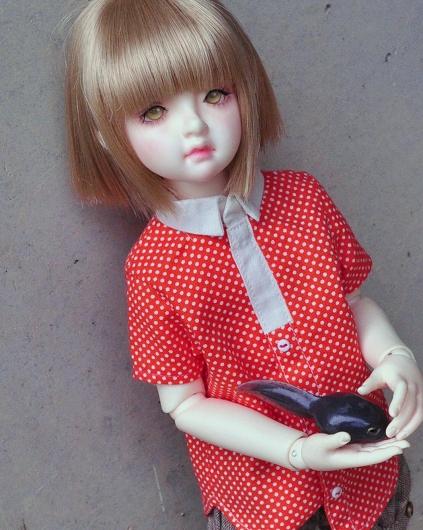 DSC_0058_20150819101725fe4.jpg