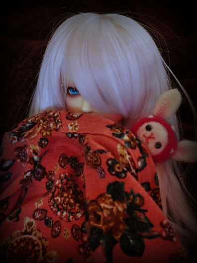 DSC_0266_201502191012409a3.jpg