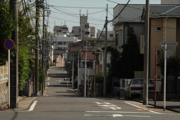 150725-sakura-02.jpg