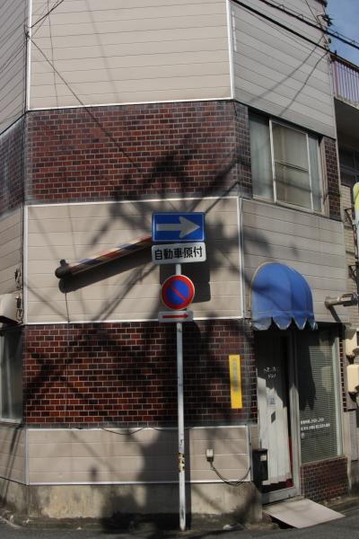 150725-sakura-10.jpg