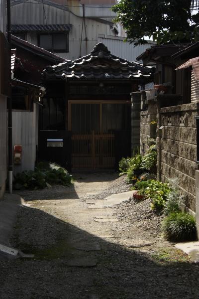 150725-sakura-14.jpg