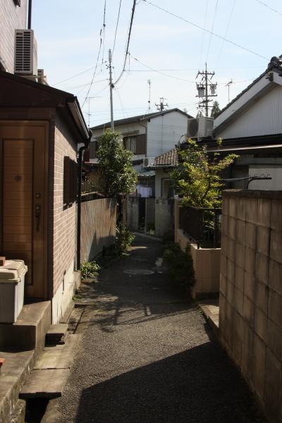 150725-sakura-15.jpg