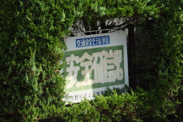 150725-sakura-26.jpg