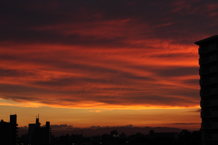 150899-sunset-06.jpg