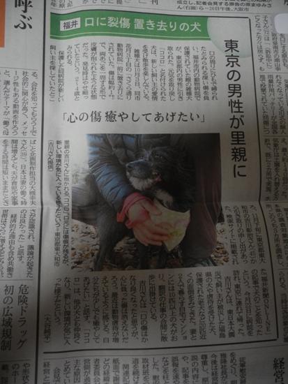 20150101 元日 (22)