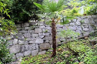 新長谷寺跡