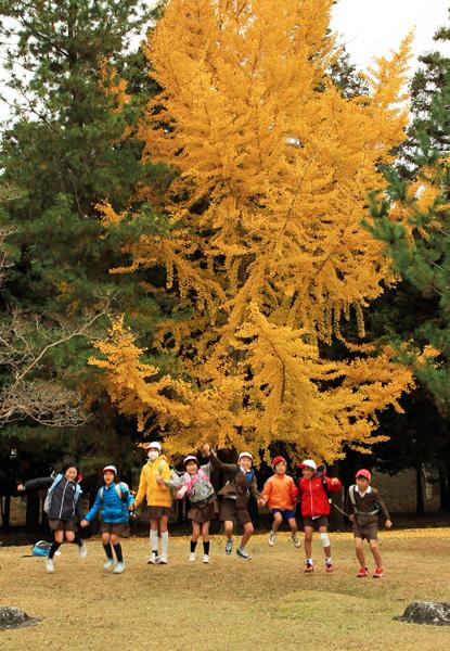 111201a奈良公園