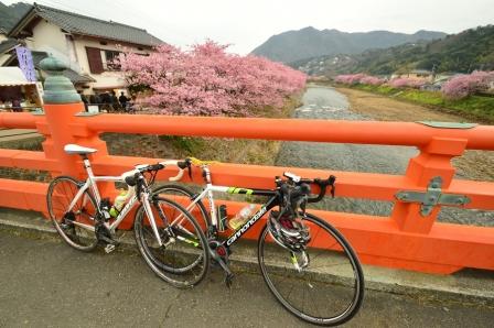 kawasakura7.jpg
