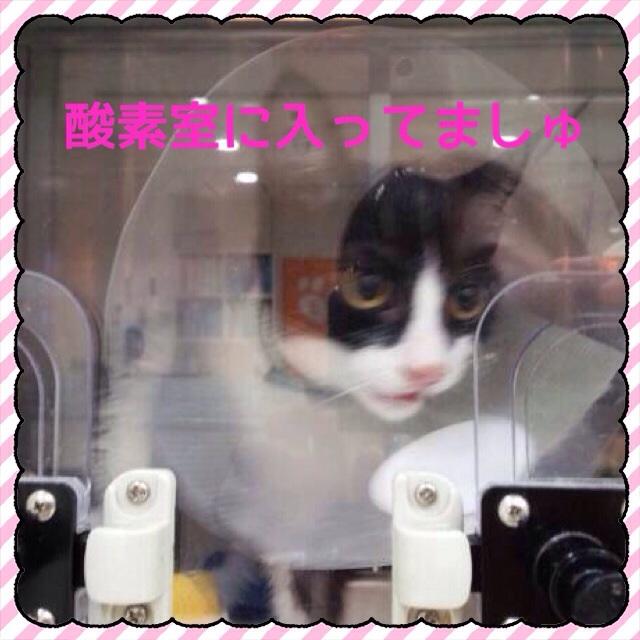 20150813231452bd6.jpg