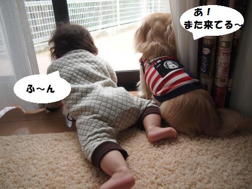 001_convert_20150118161244.jpg