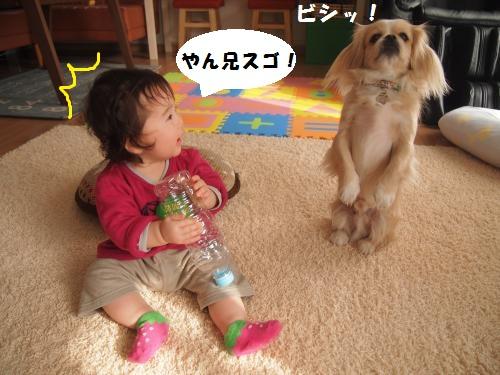 003_convert_20150128102526.jpg
