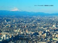 サンシャイン60から富士山を観る