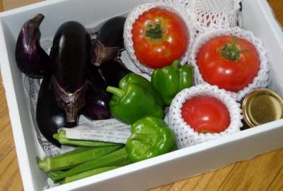 夏野菜パッケージ
