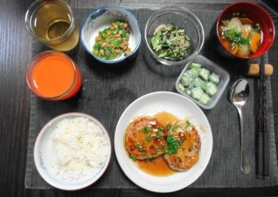 精進の豆腐ひじきハンバーグご飯