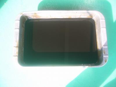 IMGP7484.jpg
