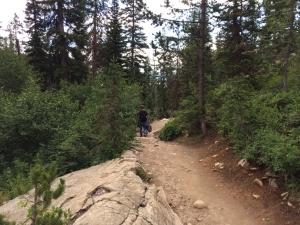 Jenny lake ハイキング中