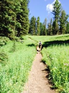 トラウトレイクまでハイキング